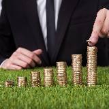 Bachelor banque et assurance