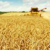Vendeur-conseil en matériel agricole