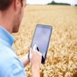 Bac Pro Conduite et gestion de l'exploitation agricole option systèmes à dominante élevage
