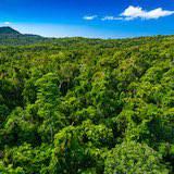 licence pro Sciences, technologies, santé protection de l'environnement