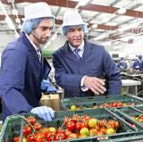 Commercial biens de consommation aux entreprises
