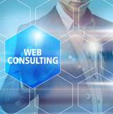 Consultant web analytics
